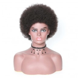 Lace Front Short Human Hair Curly Afro Wigs On Sale