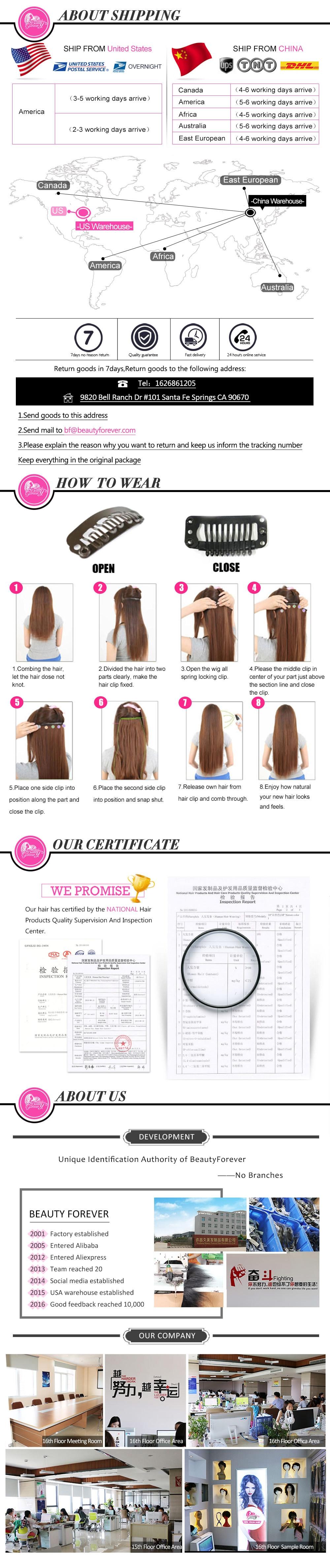 Malaysian Clip In Hair